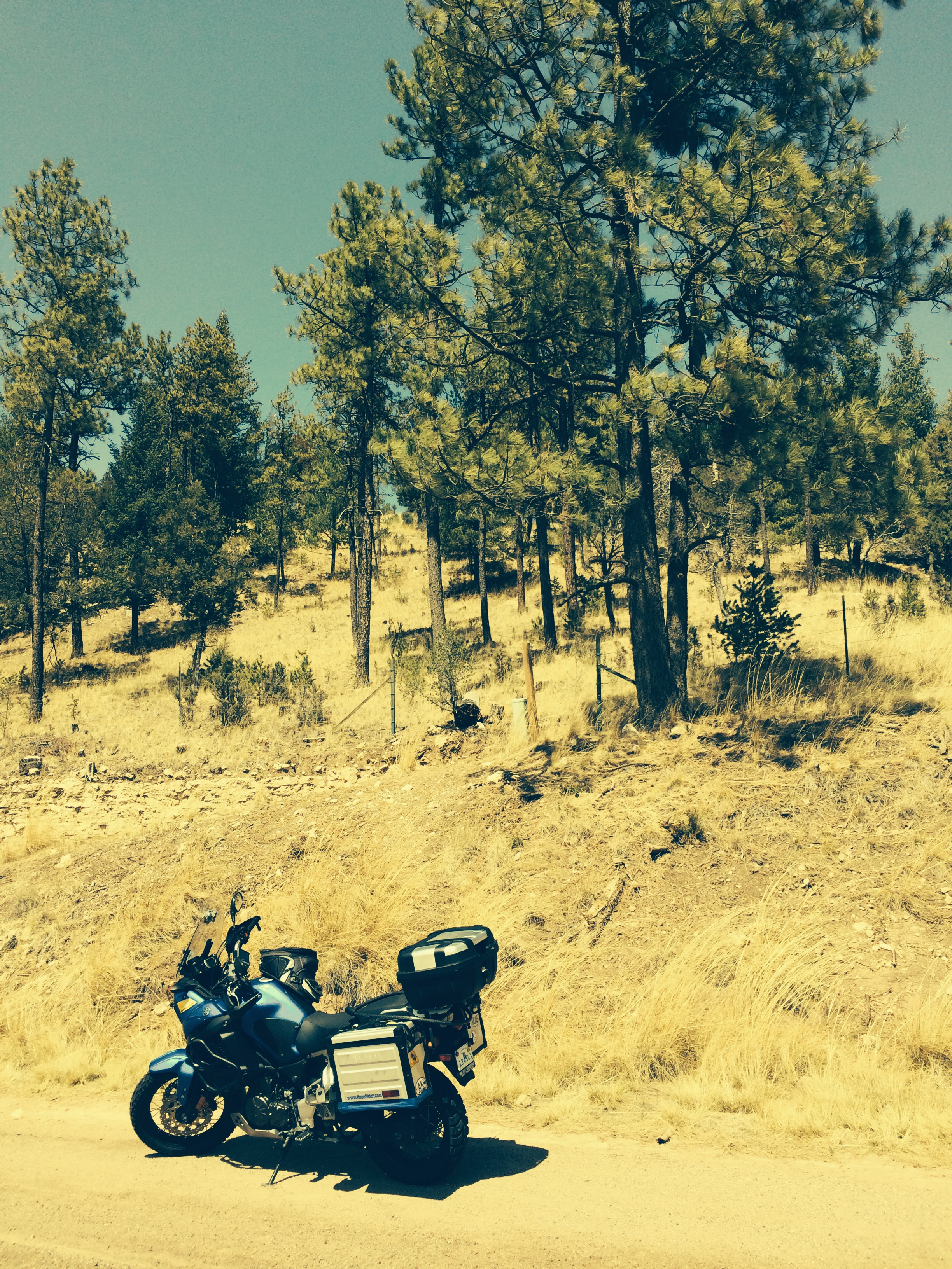 Rode up to Cloudcraft, N.M.   A beautify mountain ski town.